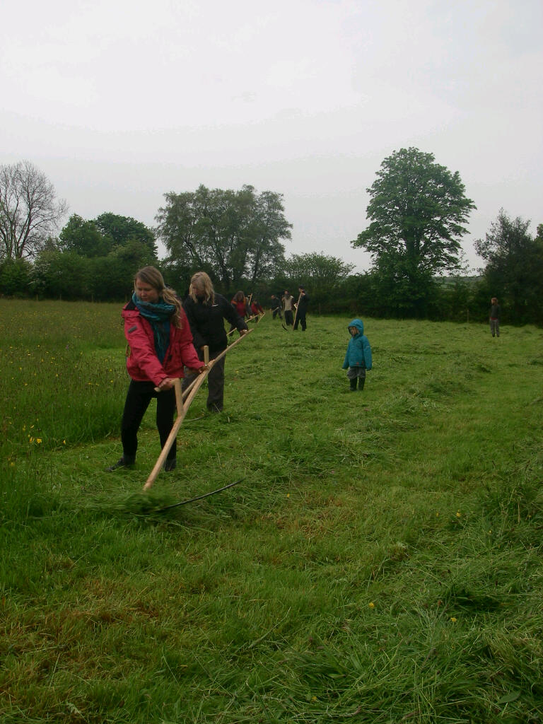 Course participants mowing on Introductory Scythe Course 24th May