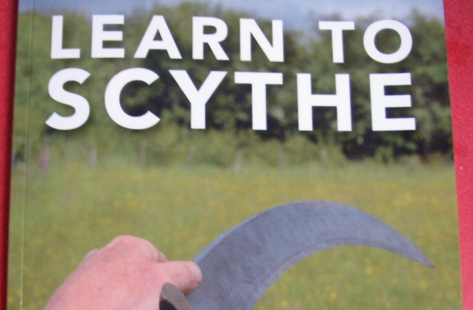 "Book ""Learn to Scythe"" by Steve Tomlin. The next best thing to going on a course and an excellent revision if you have been on one"