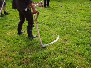 Demonstrating the mowing action on short grass, the arc made by the blade clear in the grass