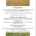 Carmarthenshire Meadows Meeting