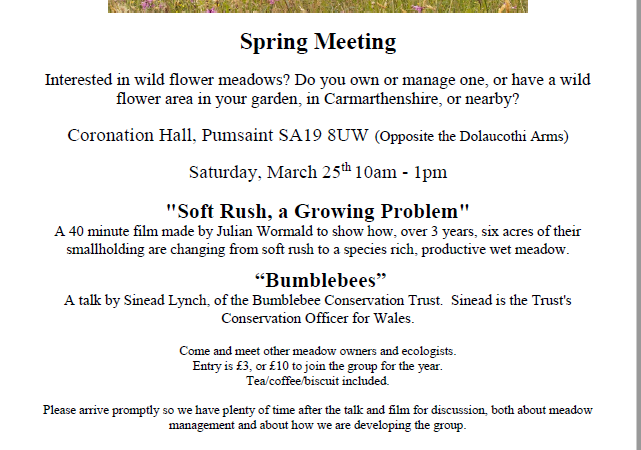 Carmarthenshire Meadows Meeting