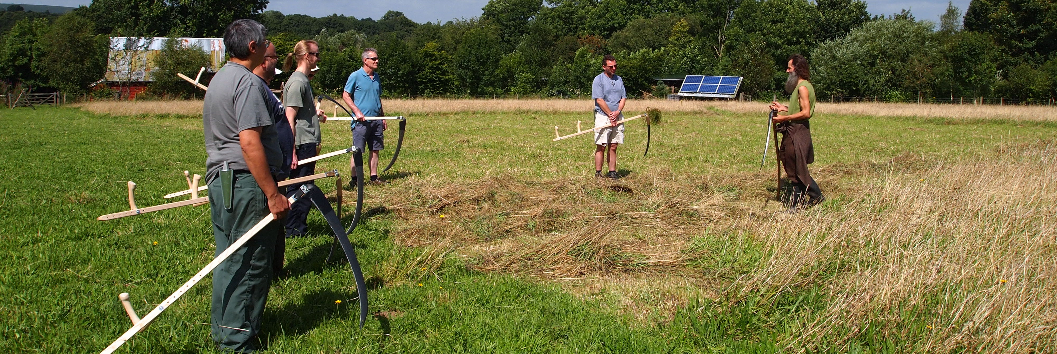 Learning to Scythe in the Hay Meadow